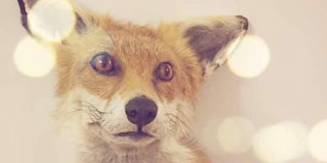 Foxhead Taxidermy tickets