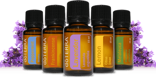 Tam's Aroma Fit: Stretch & Oils