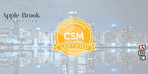 Certified ScrumMaster® (CSM) - Chicago - November 21-22