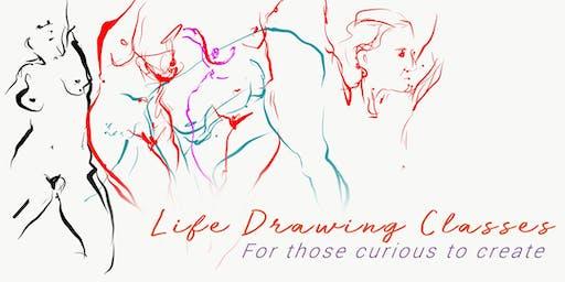 Life Drawing Classes (Macquarie University)