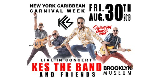 "BRASSFEST 2019: Brooklyn's ""Savannah Grass"" featuring KES the Band, Farmer Nappy, Motto, Teddyson John and more!"