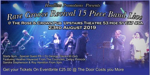 Live Rare Groove Revival 15 Piece Band