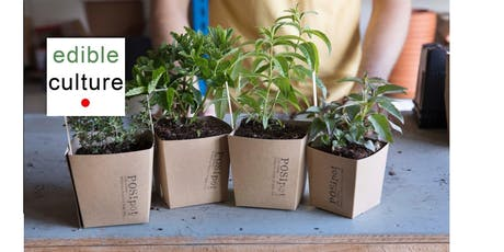 Member Event - Plastic Free in Faversham at Edibleculture  tickets