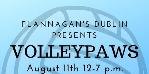 8th Annual VolleyPaws Tournament