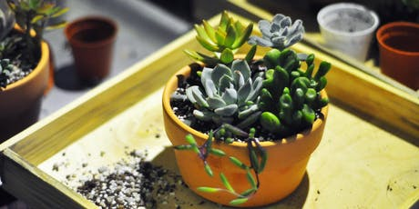 Succulents A-Z Complete Guide Workshop tickets