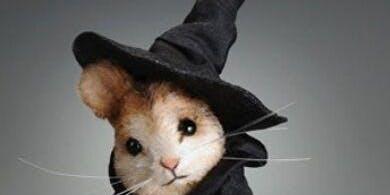 Halloween Themed Mouse Class