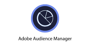 Introducing the Adobe Audience Manager