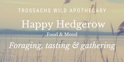 Happy Hedgerow - Foraging