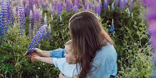 Happy Mums, Healthy Kids - using essential oils