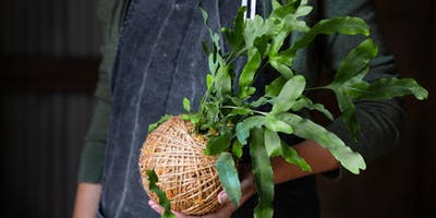 Kokedama Workshop (Torrens Valley Community Centre)