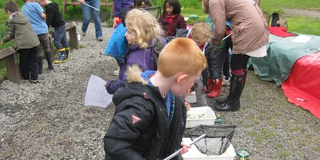 Nature Detectives! - Mini-beast hunt, walk and talk with Nessa Darcy tickets