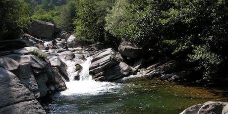 I fiumi delle nostre Alpi, biodiversità, rapporto con l'uomo, gestione e co biglietti