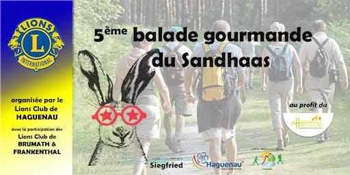 5ème balade du Sandhaas 2019  organisée par le Lions Club de Haguenau