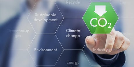Carbon Audit & SBT Setting tickets