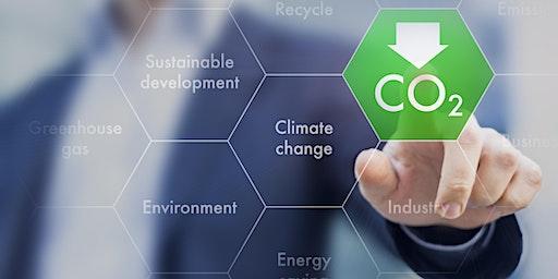 Carbon Audit & SBT Setting