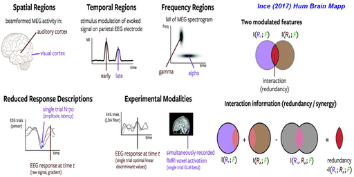 Information theoretic analysis of neuroimaging signals: Hands-on tutorial