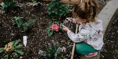 Streetwize Gardening Club