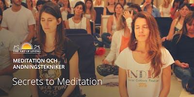 """.\""""Secrets to Meditation\"""" i Stockholm"""