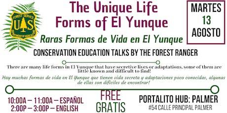 El Yunque Unique Life forms  / Raras Formas de Vida en El Yunque tickets