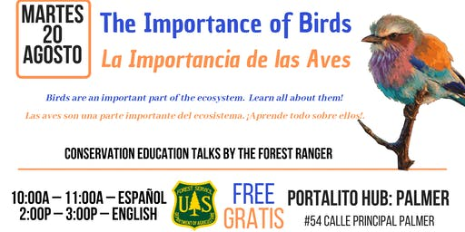 The Importance of Birds / La importancia de las aves