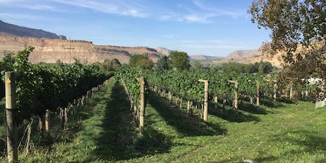 Bookcliff Vineyards - Palisade Tasting Room Grand Opening tickets
