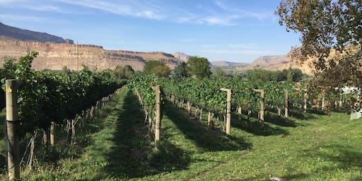Bookcliff Vineyards - Palisade Tasting Room Grand Opening