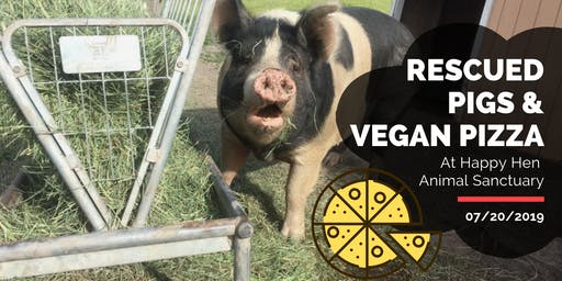 Rescued Pigs & Vegan Pizza