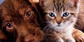 The Pet Protocol