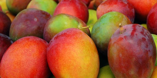 Mango Madness: Seminar and Tasting!
