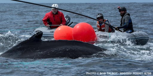 """Kathi George, """"Healthy Fisheries and Healthy Whale Populations"""""""