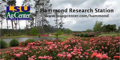 LSU AgCenter Landscape Horticulture Field Day