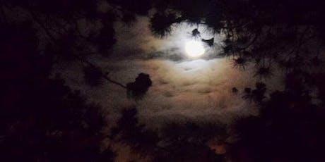 Full Moon/Lunar Eclipse Meditation & Sound Bath with Crystal Singing Bowls tickets