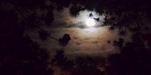 Full Moon/Lunar Eclipse Meditation & Sound Bath with Crystal Singing Bowls