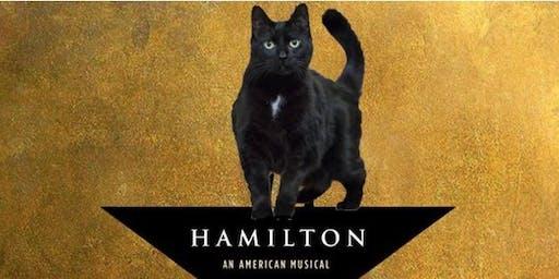Orange Street Cats Turns 9, Hamilton-Style!