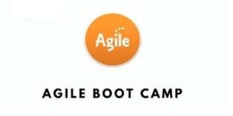 Agile Boot Camp 3 Days Training in Singapore tickets