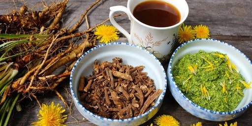Edible Weeds & Backyard Teas