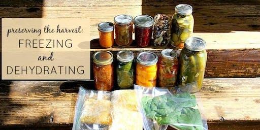 Making Food Last