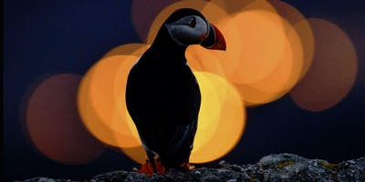 Wildlife/Lighting the Subject - A Photographic Evening with Richard Peters