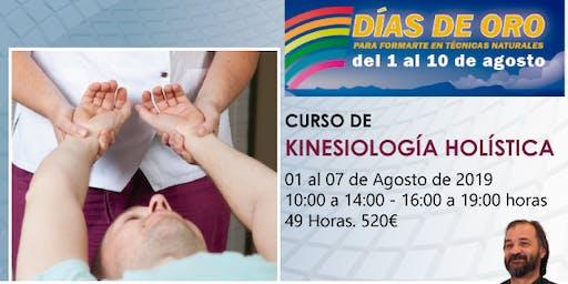 Curso de Kinesiología Holística