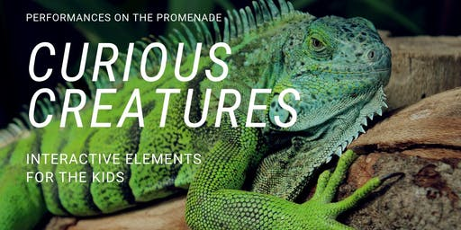 Curious Creatures at the Northshore Mall Promenade - Free event