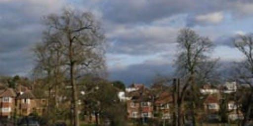FREE WALK: CAPITAL RING 4: CRYSTAL PALACE TO STREATHAM