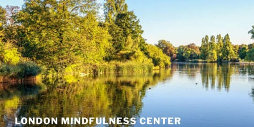 Mindfulness Training Course (MBSR)