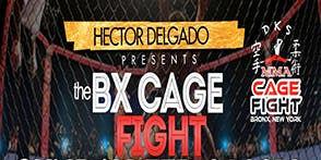 BX Cage Fight