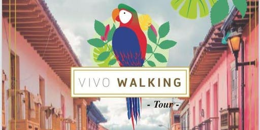 Vivo Walking and Graffiti Tour