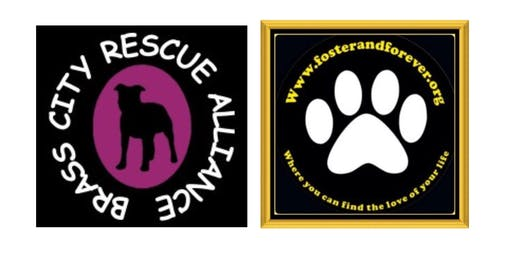 Brass City Rescue Alliance & Foster and Forever Rescue Wine Glass Fundraiser