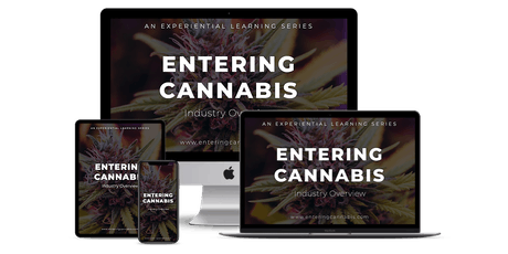 How To Enter The Cannabis Industry - [Live Online Event] - Los Angeles tickets