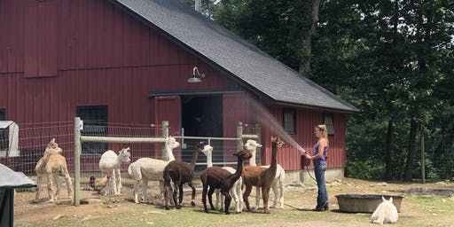 Unity Farm Sanctuary Tour (August 18th) (3pm)