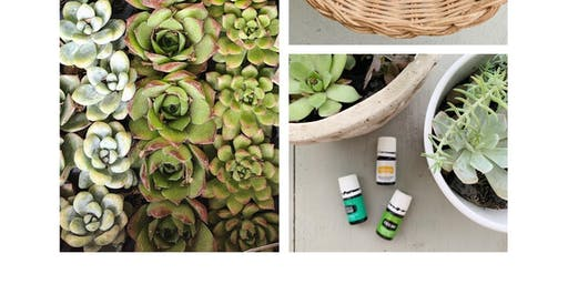 Succulents and Oils Workshop