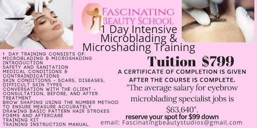 Microblading & Micro-shading 101