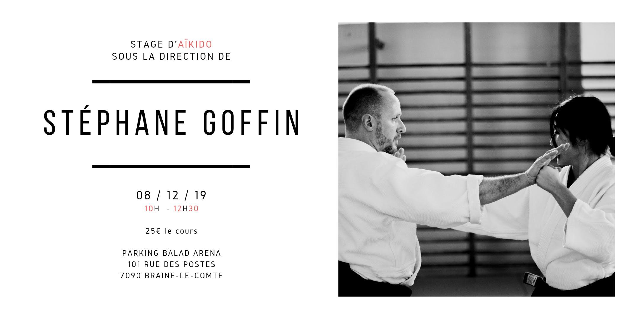Stage d'Aïkido de Stéphane Goffin au Togishi Dojo